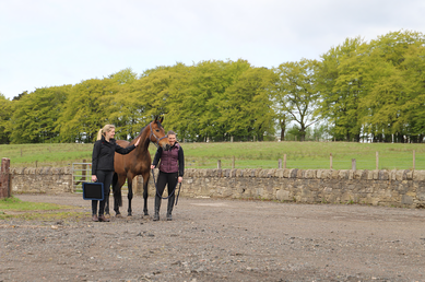 Equine Vet Owner and Horse